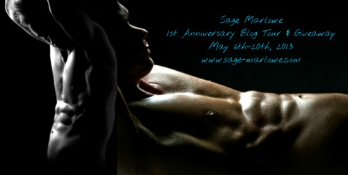 SM Banner blog tour May13